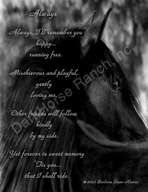 """Always"" Equine Art Poetry Print by Barbara Anne Dunn"