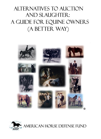 Cover of American Horse Defense Fund book by Barbara Anne Dunn
